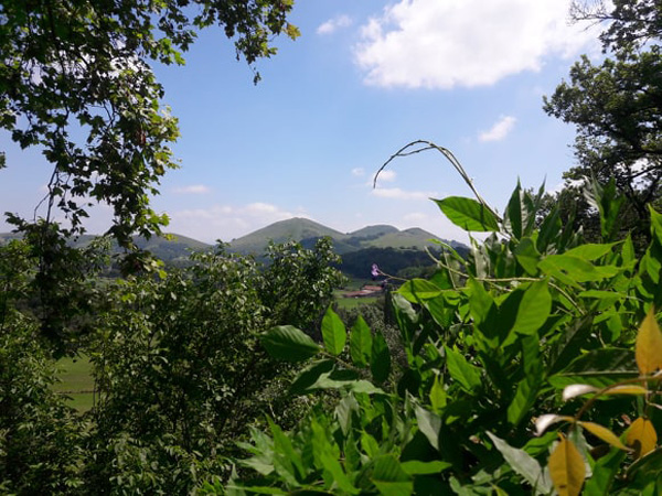 Vallée de l'arberoue-grottes d'isturitz oxocelhaya