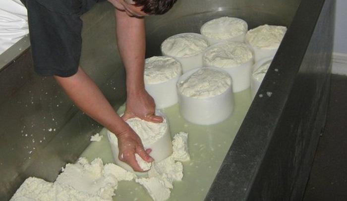 camping à la ferme Etchemendigaraya-suhescu-fromage