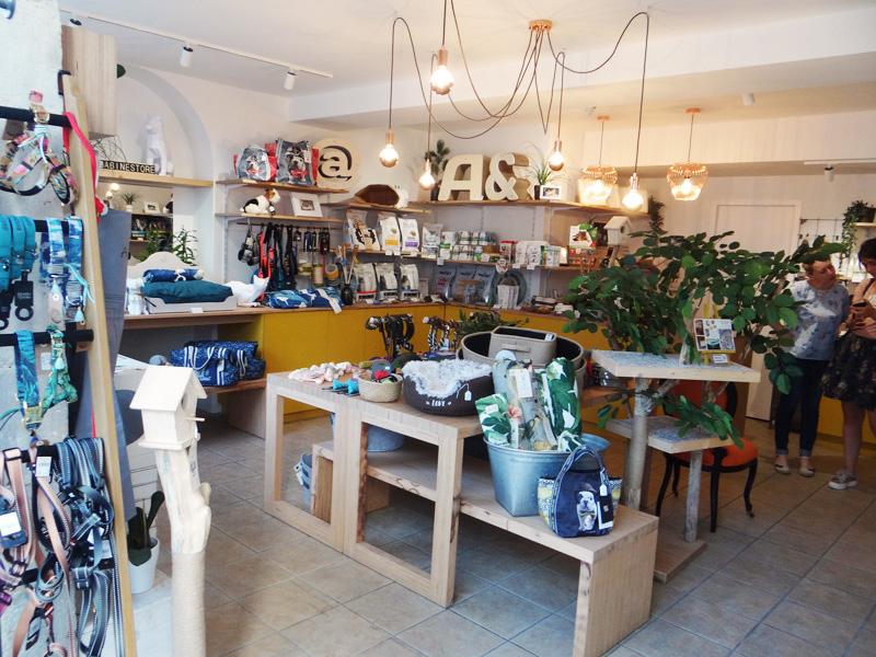 Babine concept store-magasin chien et chat